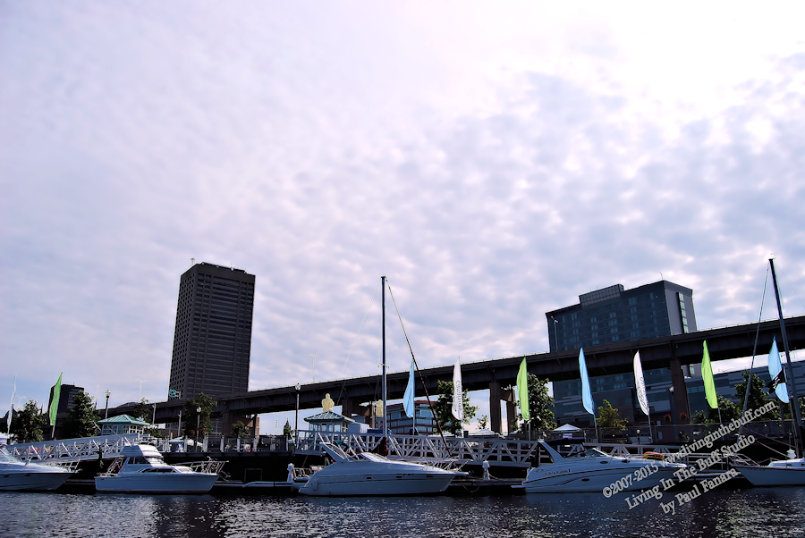 Waterfront Fun