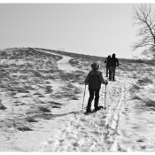 Snowshoeing at Tifft Nature Preserve