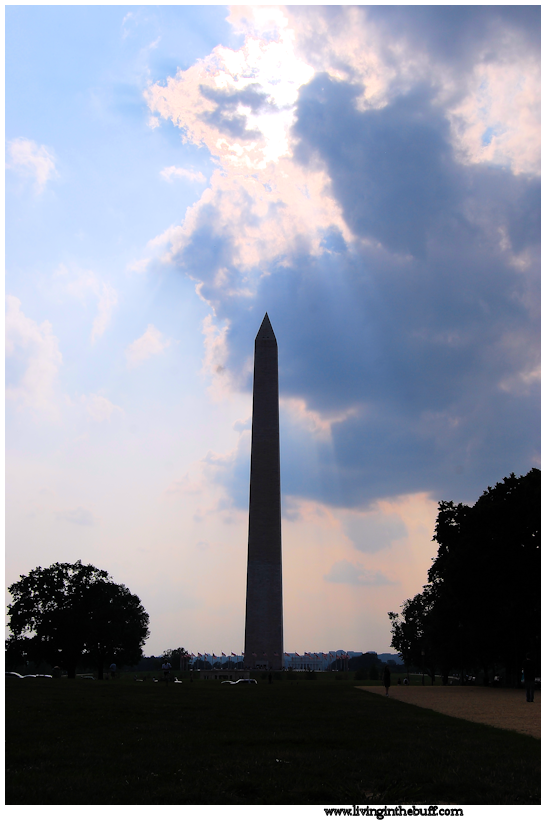 The Washington National Monument