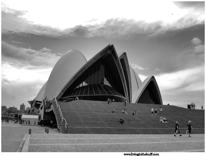 The Opera House from ground level