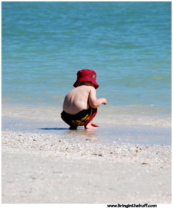 Discovering - Florida